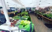 Photo of Columbia Pike Farmers Market