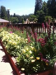 Photo of Northwood Lodge