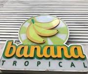Photo of Banana Tropical