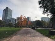 Photo of Boston Common