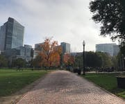 Photo of Boston Common