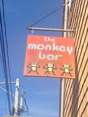 Photo of Monkey Bar