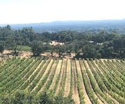 Photo of Paradise Ridge Winery
